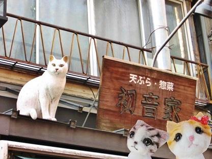 猫ちゃんだ