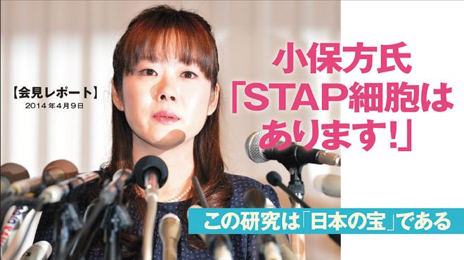 STAP細胞-2