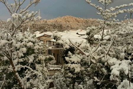 140307_雪1