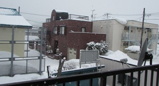 また、雪が降り