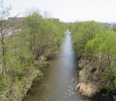 こんな川が流れている