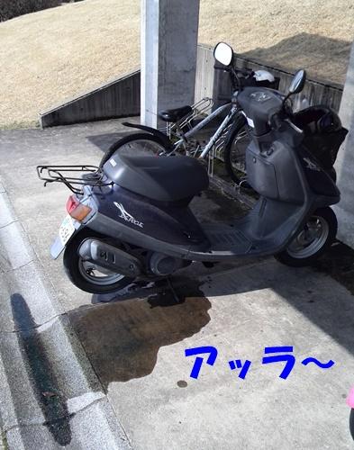 KIMG0150.jpg