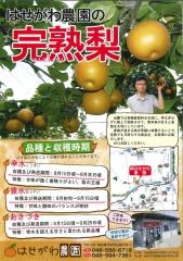 行田 長谷川農園 梨汁