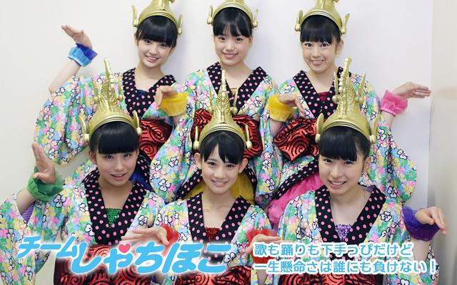 main_syachihoko2.jpg