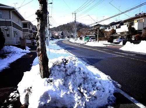 栃木県内の被害状況は?
