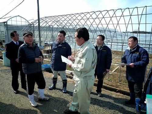 民主党栃木県連≪大雪による農業被害に関する緊急現地調査≫へ!⑩