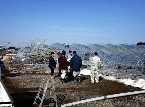 民主党栃木県連≪大雪による農業被害に関する緊急現地調査≫へ!⑭