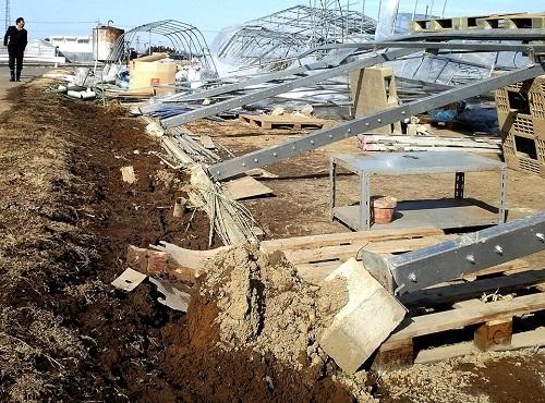 民主党栃木県連≪大雪による農業被害に関する緊急現地調査≫へ!⑰