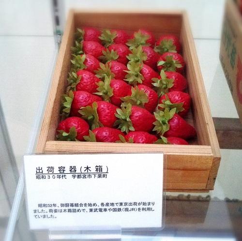栃木のいちご<出荷箱の変遷>!②