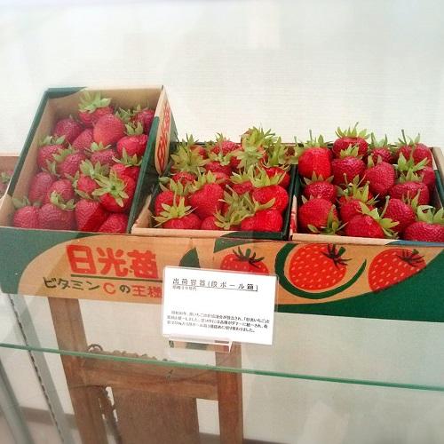 栃木のいちご<出荷箱の変遷>!③