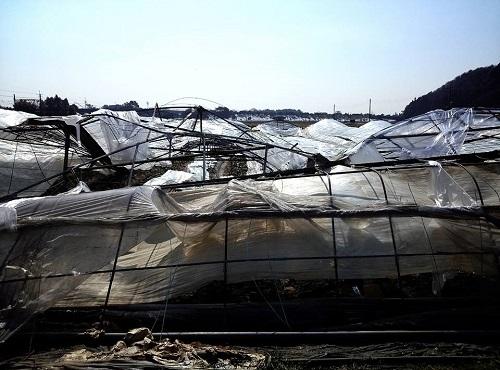 民主党栃木県連≪雪害被害に関する現地調査≫!速報2①