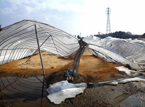 民主党栃木県連≪雪害被害に関する現地調査≫!速報3②