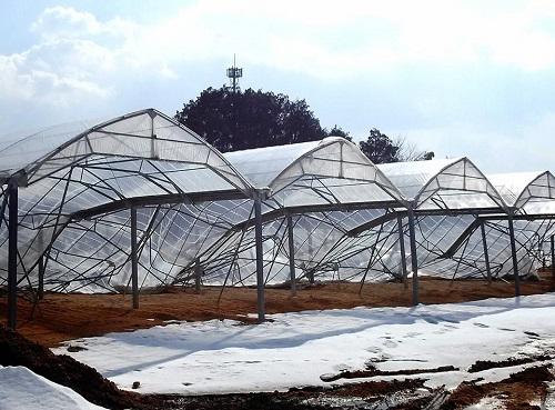 民主党栃木県連≪雪害被害に関する現地調査≫!速報3⑧