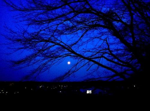 今宵は月が…