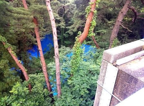 6月16日~17日における大雨による被害状況<現地調査>!③