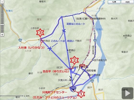 20140622只見町ヒメサユリ (560x417)