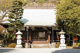 140316神奈川城願寺ビャクシン⑮
