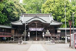 140504茨城 雀神社大欅