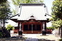 140517埼玉 徳性寺の銀杏⑨
