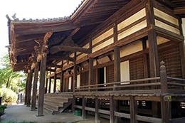 140517埼玉 龍蔵寺銀杏⑥