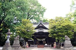 140517埼玉 玉敷神社銀杏⑥