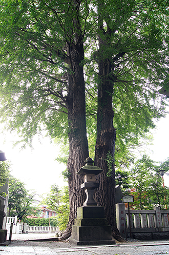 140612東京 葛西神社弥栄①