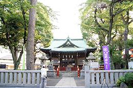 140727東京 熊野神社楠⑫