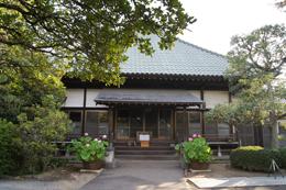140802埼玉 聖徳寺の銀杏⑧