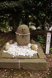 140829埼玉 香取神社椋⑭