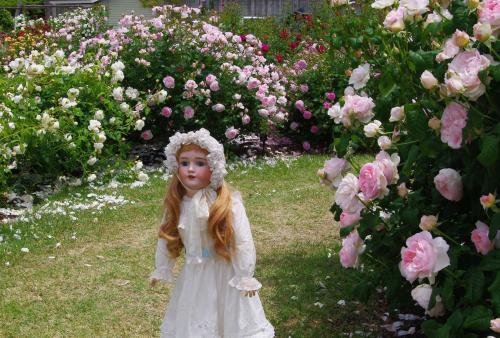 アンティークドール 薔薇園