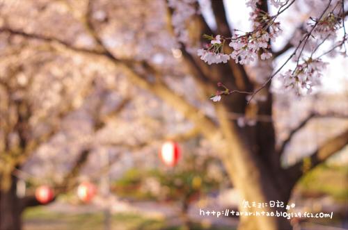 blog348.jpg
