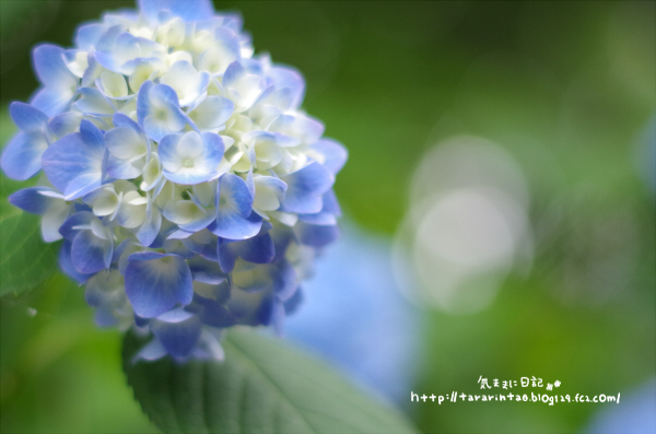 blog360.jpg