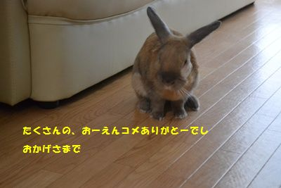 022_2014070513383953a.jpg