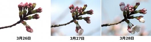 140331-03As.jpg