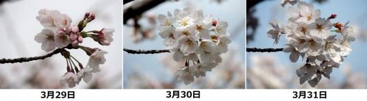 140331-04As.jpg