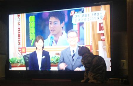 blog_000003884.jpg