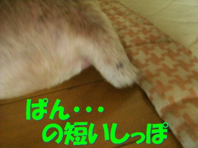 P7213510.jpg