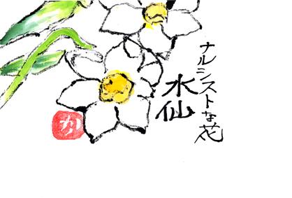水仙0225