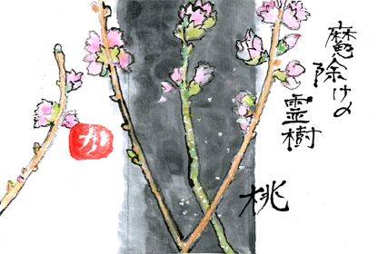 桃の花0303
