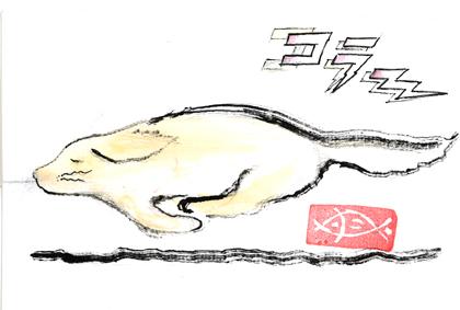 コラ~(27)0316