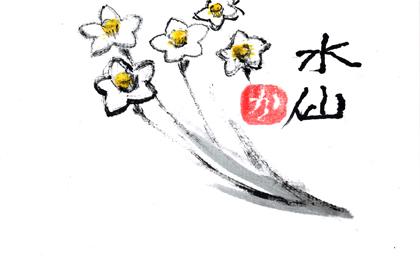 水仙0405