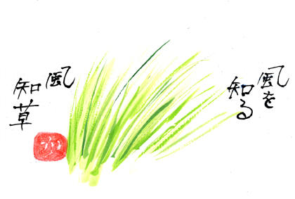 風知草0711