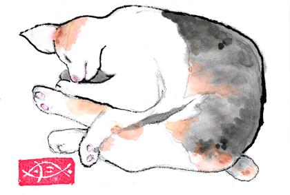猫0821