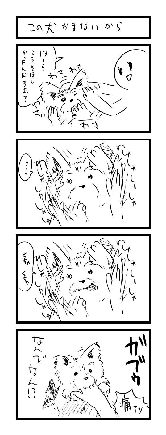 四コマ 噛まない犬