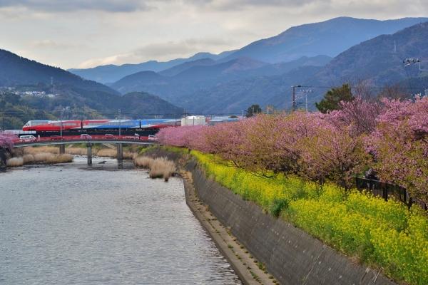 2013年3月3日 伊豆急行線 稲梓~河津 2100系R-5編成