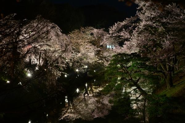 2014年4月14日 上田城 千本桜まつり