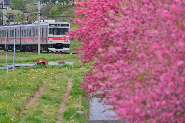 2014年5月5日 上田電鉄別所線 神畑~寺下 1000系1004F