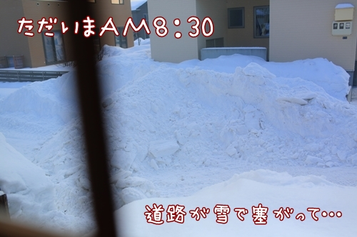 7G6A8518a.jpg