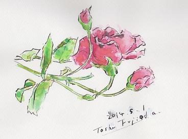 IMG_2014つるバラ