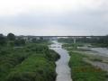 9羽村堰下橋から下流を写す